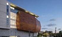 Ngắm bảo tàng lịch sử Steinhardt với gỗ lồi mặt tiền
