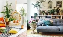 Căn nhà tinh tế, phóng khoáng với phong cách Bohemian
