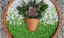 Ý tưởng sáng tạo cho khu vườn đầy màu sắc