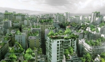 Những mảng xanh trong không gian kiến trúc