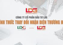 Công ty CP Đầu tư LDG thay đổi hệ thống nhận diện thương hiệu mới