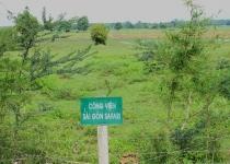 Điều chỉnh quy hoạch Công viên Sài Gòn Safari