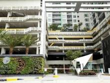 Cho thuê căn hộ chung cư cao cấp Season Avenue KĐT Mỗ Lao, Hà Đông, Hà Nội. Liên hệ 0979803883