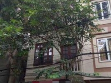 Bán nhà phố Tạ Quang Bửu, 5x120m2 phân lô ô tô  tránh chỉ 12.9 Tỷ. LH: 0379.665.681