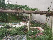 Bán Đất Trung Tâm TX Phổ Yên Khu dân cư đông đúc gia rẻ 0962937097