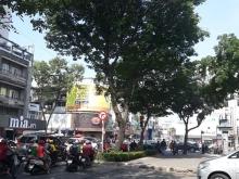 Nhà khu phố sầm uất MT đường Võ Thị Sáu P.Tân Định Q1 DT: 3,6x17 XD 1T2L