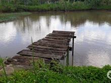 Bán Nhà Vườn Có Sẵn Ao Cá Đẹp Phù Hợp Kinh Doanh Nhà Hàng Hồ Câu