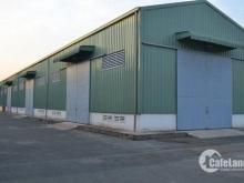 cần tiền gấp trong tuần chửa bệnh, bán xưởng 1620m2 mt Nguyễn Bình, SHR