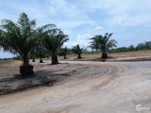 Còn 11 lô Đất nền SỔ ĐỎ sân gôn Long Thành, Giá 12 triệu, góp 12 tháng, không bắt buộc xây dựng