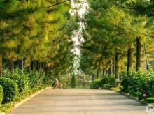 Đất nền biệt thự The Phoenix Garden, mặt đường Tây Thăng Long, cạnh Vinhome Đan Phượng