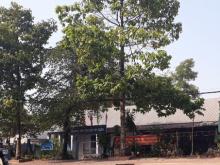 Bán đất MT Bùi Thị Xuân, Bình Dương, 950tr, 80m2, SHR, 0939278962