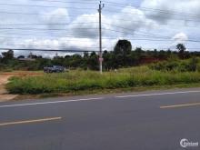 Bán GẤP lô đất diện tích lớn, MT Quốc Lộ 20, huyện Đức Trọng, Lâm Đồng