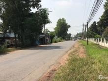 Bán 2 nền đất liền kề, màu hồng khu dân cư sân bay Long Thành, đường hiện hữu