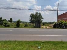 chính chủ cần bán 2 lô liền kề MT đường 769 đối diện khu tái định cư D2D lộc an