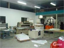 Nhà vườn, kho xưởng, mặt tiền đường Hưng Long Bình Chánh 1169m2 chính chủ. SHR.