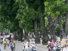 Cho thuê nhà phố Đường Láng thích hợp làm văn phòng