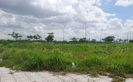 Bất động sản 24h: Phân khúc đất nền có còn