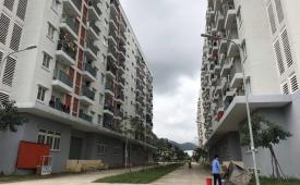Ba kiến nghị phát triển nhà ở xã hội