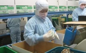"""Xuất khẩu lao động sang Nhật Bản: Cẩn thận """"chiêu"""" lừa mới"""