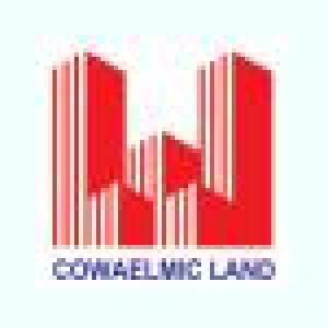 Công ty Cổ phần Lắp máy Điện nước và Xây dựng (COWAELMIC)