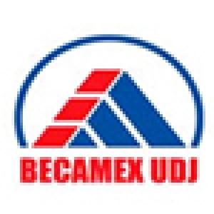 Công ty Cổ phần Phát triển Đô thị (Becamex UDJ)