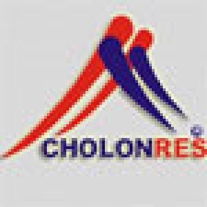 Công ty Cổ phần Địa ốc Chợ Lớn (CholonRes)