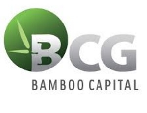 Công ty Cổ phần Bamboo Capital - (BCG)