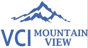 Công ty Cổ phần Đầu tư VCI