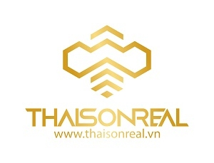 Công ty TNHH Bất động sản ThaiSon Real