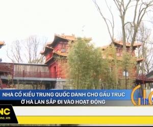 Nhà cổ kiểu Trung Quốc dành cho gấu trúc ở Hà Lan sắp đi vào hoạt động