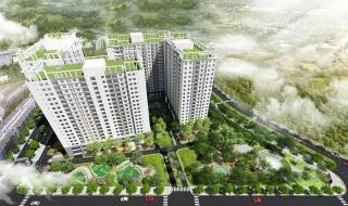 Dự án Tara Residence Quận 8