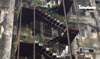 """Người Sài Gòn liều mình sống trong chung cư """"răng rụng"""""""