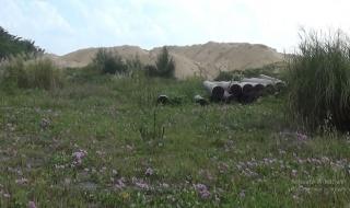 Cận cảnh 3 khu đất 'khủng' được TP.Đà Nẵng thu hồi làm công viên