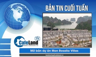 Bản tin dự án tuần 2 tháng 7: Mở bán dự án Mon Rosalia Villas