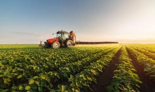 Bất động sản nông nghiệp: Miền đất hứa giàu tiềm năng