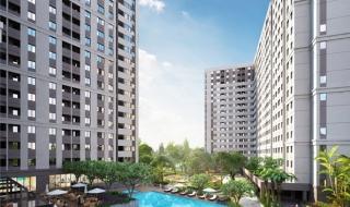 Ngày 29/8: Sự kiện bán hàng dự án First Home Premium Bình Dương