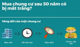 Infographic: Mua nhà chung cư sau 50 năm có bị mất trắng?