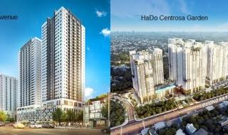 """Infographic: \""""So găng\"""" 2 dự án The Park Avenue và HaDo Centrosa Garden"""