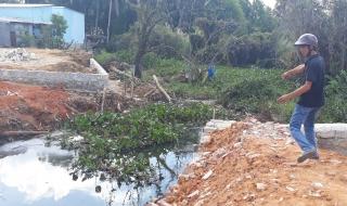 Lập đoàn kiểm tra vi phạm đất đai, chặt phá và lấn chiếm rừng ở Phú Quốc