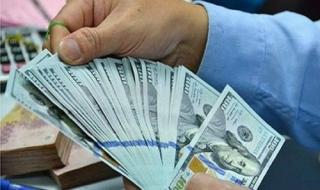 Dự trữ ngoại hối lớn giúp sẵn sàng can thiệp thị trường