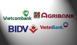 Xác định vốn nhà nước khi chuyển tổ chức tín dụng nhà nước thành công ty cổ phần