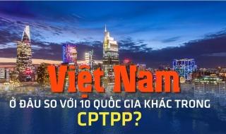 Việt Nam ở đâu sơ với 10 quốc gia khác trong CPTPP?