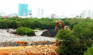 Bình Định: Thu hồi quyết định cho thuê đất, giao đất của Công ty CP Thị Nại Eco Bay