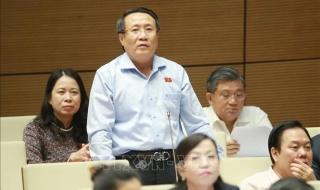 Xem xét kỹ lưỡng các phương án của dự án sân bay Long Thành