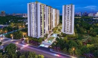 Doanh nghiệp địa ốc bị mạo danh để bán căn hộ cao cấp tại TP.HCM