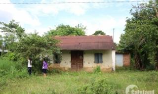 Đồng Nai: Định giá đất thu hồi xây dựng đường Phước Bình