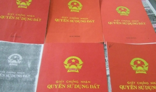 Quy định về chuyển quyền sử dụng đất