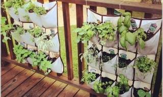 Biến ban công nhà bạn thành khu vườn mini xinh xắn