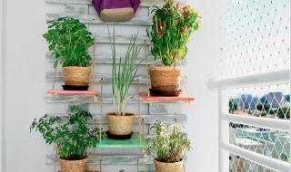 9 cách đơn giản trang trí tường với kệ treo