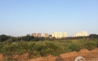 QCG bán dự án Phước Kiển, tạm ứng 50 triệu USD trả nợ BIDV